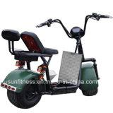 1500W o pneu da roda de gordura Usun Harley Citycoco Harley Scooter com marcação CE