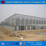 China Factory Price plastic Shed Greenhouse for Angriculture Aquaponics