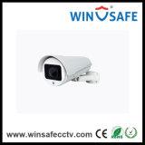 Auto-Kfz-Kennzeichen-Sicherungs-Kamera des weißen Licht-600tvl (WS-CL001WLP)