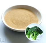 Constructeur d'extrait de concentré de broccoli