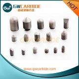 Botones delicados del carburo de tungsteno para el taladro