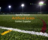 Berufshersteller-Fußball-Abstand-synthetisches Gras mit 16 Jahren der Erfahrungs-(Str.)
