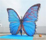 Надувные гигантских бабочек баллона (K2052 - концептуальное)