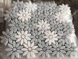 الصين طبيعيّ حجارة أسلوب يفرش [موسيك فلوور]/جدية زخرفة [وتر-جت]