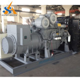 De populaire 60Hz Stille Generator van Disel