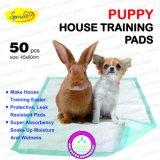 سريعة [درينغ] كلب تدريب [ب] كتلة مع شريط لصوق لزجة