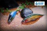 釣り道具の魅惑についての専門OEMの製造業者