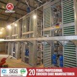 Cages de poulet pour la ferme avicole pour le Nigéria