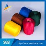 Het ruwe/Geverfte Geweven van het Borduurwerk Maagdelijke 100% Polyester Gesponnen Garen van Draad