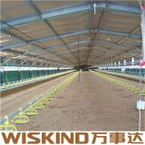 SGS Сборные стальные конструкции здания фермы птицы на заводе