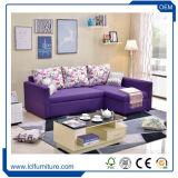 Bâti de sofa se pliant en cuir moderne de dormeur avec le matelas
