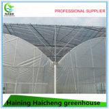 플랜트와 야채를 위한 직업적인 고품질 Shading 온실