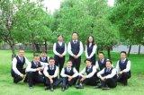 Hotsale Asian De501 excellent bois Putty