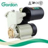 Pompe en laiton électrique d'eau propre de turbine de Gardon avec le câblage cuivre
