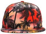 Gorras de béisbol del casquillo del Snapback del casquillo del deporte