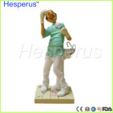 歯の手仕事の歯科医のギフトの樹脂のクラフトの供給記事Hesperus