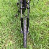 fiets China van de Batterij van de Fiets 5000W Ectric de Goedkope Elektrische 26A