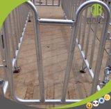 Casa de fazenda de suínos suínos Equipamento Gestação Crate/Stall