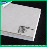 Carta da parati di goffratura bianca del materiale di stampa del getto di inchiostro del documento di parete del Eco-Solvente