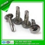 Vis Drilling d'individu d'acier inoxydable de tête de l'armature M4.8*19 pour la construction