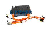 Pacchetto della batteria di litio di offerta della fabbrica con BMS per il veicolo adibito al trasporto di persone, veicolo utilitario