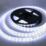 Striscia dell'indicatore luminoso della decorazione LED della flessione 12V di alta qualità 5050
