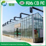 Feuille de polycarbonate Green House