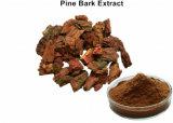 95 % proanthocyanidines Pine Bark Extract prévenir Angiocardiopathy
