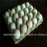 [فكتوري بريس] ورقة بيضة صينيّة آلة/بيضة صينيّة يجعل آلة
