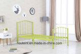 다채로운 금속 Kd 1인용 침대 (OL17146)