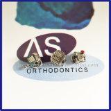 Uno mismo ortodóntico dental que liga los corchetes con Damon Q