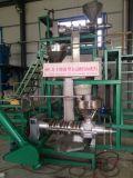 El petróleo frío del tornillo clava la cadena de las buenas condiciones y de producción