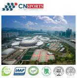 De Oppervlakte van het Hof van de Sporten van Spu voor Stadion/de Bevloering van de Gymnastiek