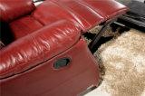 현대 진짜 가죽 소파를 가진 거실 소파는 놓았다 (455)