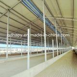 Het Huis van de Kip van de Bouw van het staal en het Landbouwbedrijf van de Kip met Uitstekende kwaliteit