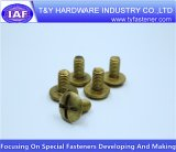 China Proveedor de oro de tornillo con cabeza avellanada latón