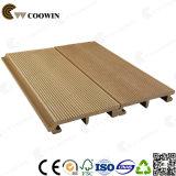 Legno e rivestimento impermeabile composito di plastica della parete (TH-10)