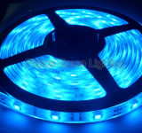 LED Strip Light SMD 3528SMD / SMD 5050 / SMD 2835 / SMD 5630