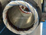 セリウムの公認の工場価格の最もよい品質の耐圧防爆電動機