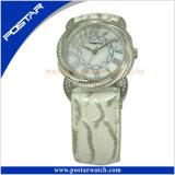 Horloge van het Roestvrij staal van Ce het In het groot met de Band van de Huid van de Slang