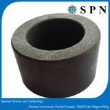 De Magneet van het Ferriet van de magneet belt de Permanente Veelpolige Kernen van de Cilinder voor Rotor