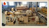 Extrudeuse de vide de machine de compactage de brique (VP60)