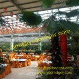 Gewächshaus für Gaststätte-grünes Haus-Blumen-Gemüsegewächshaus