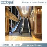 Эскалатор в лифте пассажира