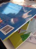 Couverture souple, Saddle Stich, édition de livres pour enfants