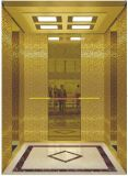 A tração Gearless Vvvf conduz para casa o elevador da casa de campo (RLS-230)