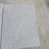 Het Chinese G603 Witte Graniet van de Sesam voor Trede, Eigen Steengroeve en Blok