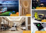 10W, 20W, 30W, 40W, 50W, серая солнечная электрическая система 60W для домашней пользы (батареи лития/свинцовокислотной батареи)