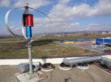 AC 220V 1000W縦の軸線の風力のタービン