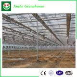 Vegebableのための商業アルミニウムフレームのポリカーボネートシートの温室